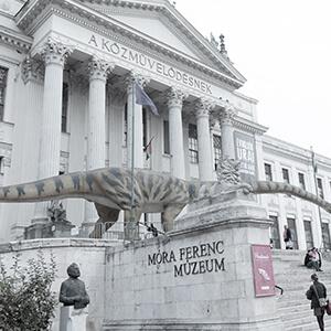 Móra Ferenc Múzeum, Szeged – műszaki ellenőri és lebonyolítói feladatok ellátása